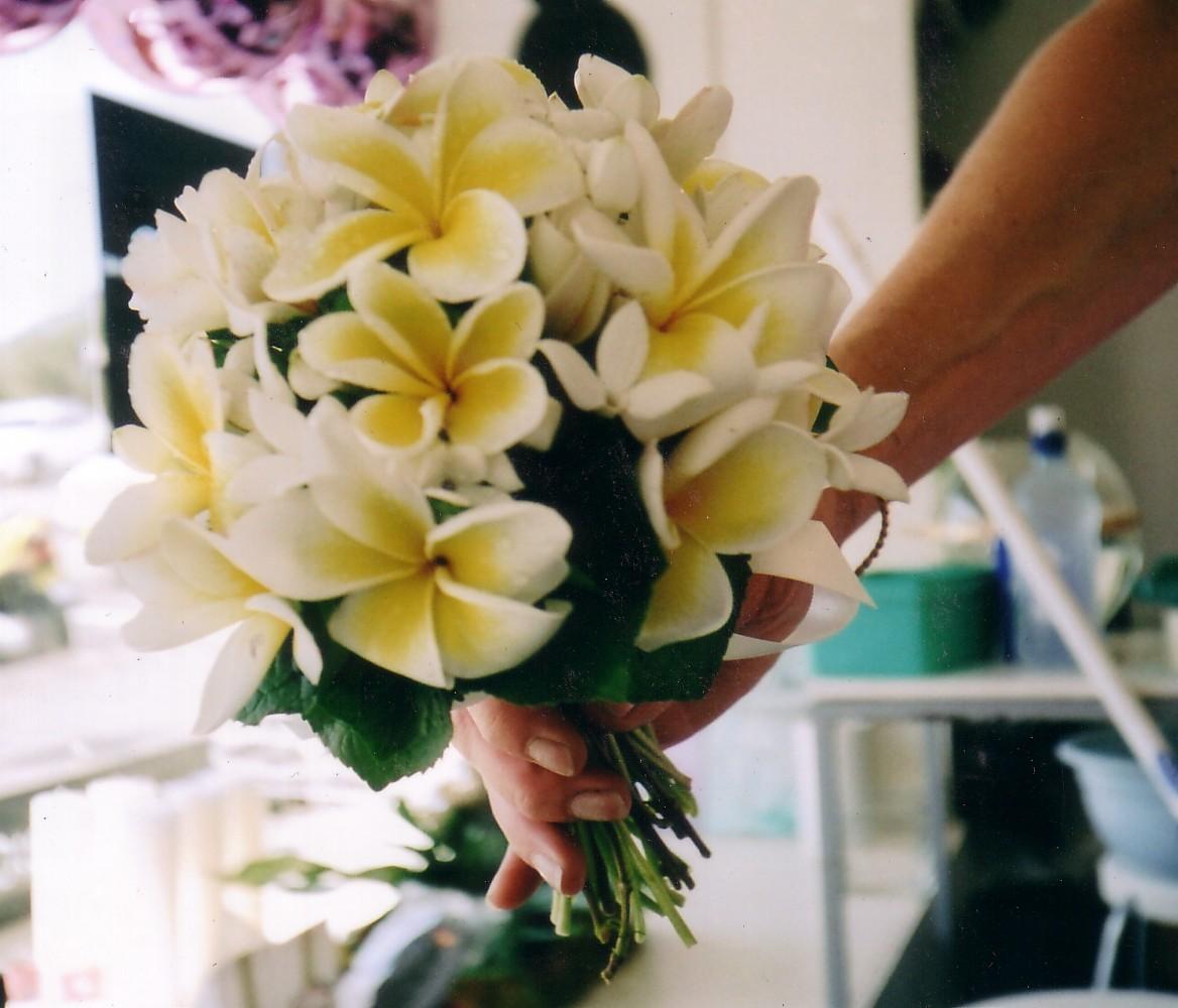 Theme Mariage Orchidee Decoration : Fleur de frangipanier décoration mariage lot