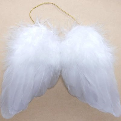 Ailes d'Ange Plumes Blanches D�coration Plumes Mariage