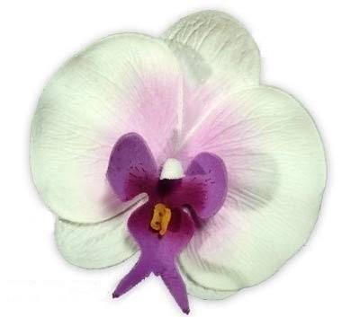 orchid es mariage decoration mariage lot de 10 accessoires de mariage. Black Bedroom Furniture Sets. Home Design Ideas