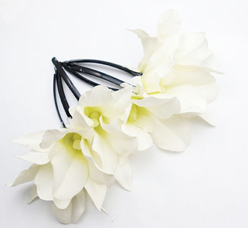 orchidee blanche cheveux