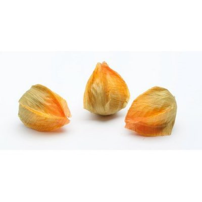 Boutons de physalis orange en tissu | Décoration de table