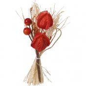 12 bouquets nature physalis bordeaux
